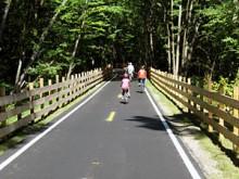 Assabet Trail