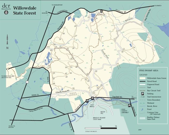 NSC Willowdale mountain biking